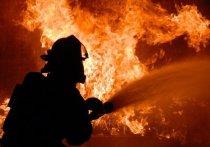 Двоих детей спасли на пожаре в посёлке Южный Иркутского района