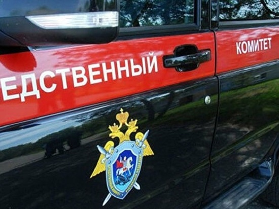 Мужчину, убившего 5-летнего сына в Барнауле, признали невменяемым
