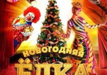 Ярославский цирк приглашает жителей Костромы на