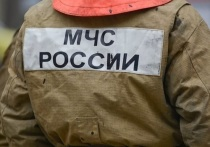 Из школы Екатеринбурга пришлось эвакуировать людей из-за пожара