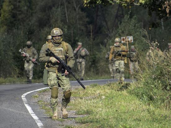 Идею Зеленского о «муниципальной страже» признали губительной для Донбасса