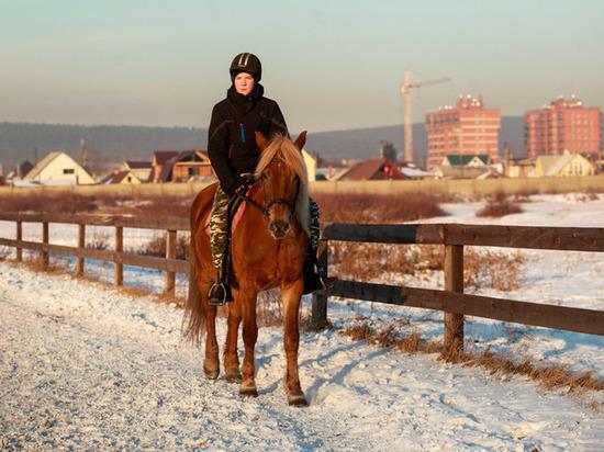 Ипподром Иркутска будут сохранять для конного спорта