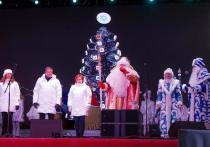 В Рязани официально стартовал проект «Новогодняя столица России 2020»