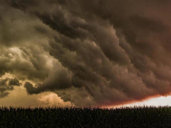 Россиян предупредили о грядущих погодных аномалиях