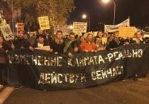 Новосибирские экоактивисты протестуют в Мадриде против таежных пожаров