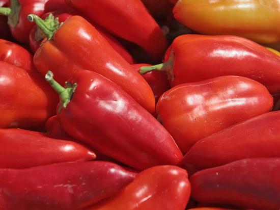 Как волгоградцам вырастить перец для приправы