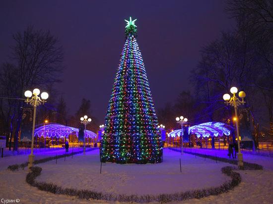 Ради новогодних елок на нескольких участках в Красноярске запретят парковку