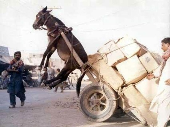 Как «перегрузы» портят новые дороги в регионах