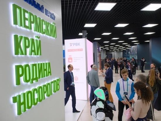 Специальный представитель президента РФ Дмитрий Песков отметил опыт Прикамья по взращиванию «компаний-носорогов»