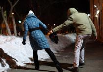 В Хакасии участились случаи похищения сумок на улице