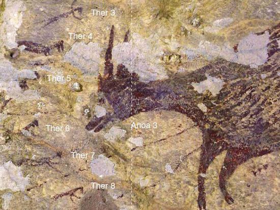 Древнейшее наскальное изображение охоты нашли в Индонезии