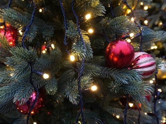 Роскачество рассказало, какие новогодние гирлянды опасны
