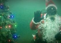 Мурманские дайверы установят новогоднюю ёлку на дне залива