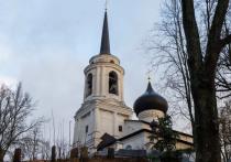 Директор «Михайловского» объяснил вырубку деревьев рядом с могилой Пушкина