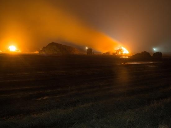 Житель Тамбовской области сжег 180 тонн сена