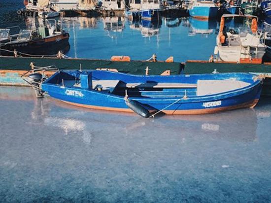 «Море стало желе»: появились кадры «орд» медуз, заполонивших берег Крыма