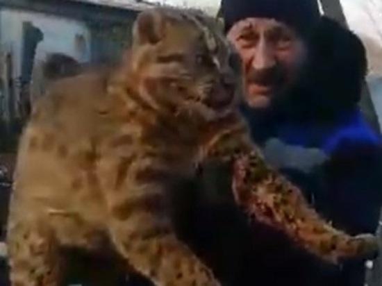В Башкирии убили краснокнижное животное