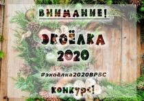 В Волгограде объявлен конкурс на лучшую экологичную елку