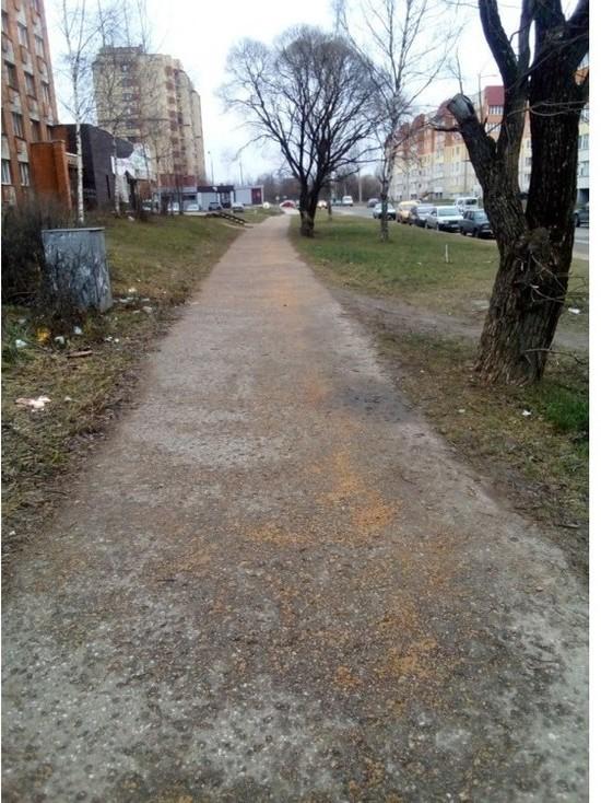 Снега и льда нет, но псковские тротуары посыпают песком