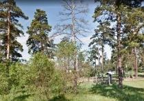 Сапожников предложил сделать парк в Сосновом Бору на месте руин кафе