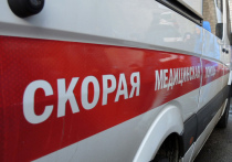 Полуголый дебошир, обмотанный цепью, избил полицейского на северо-востоке столицы