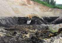 Зима в Алтайский край опять пришла неожиданно