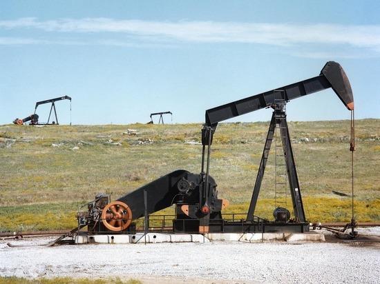 В нефти из