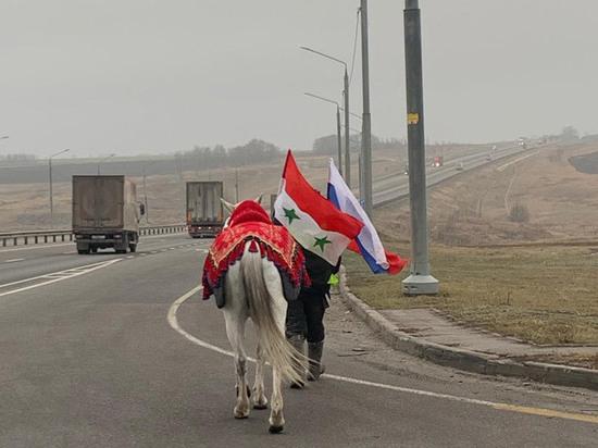 В Кремль на белом коне