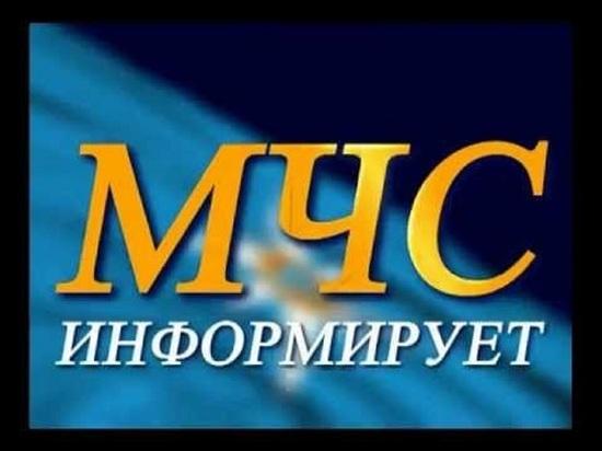 Из-за сильного ветра с нескольких районах Костромской области отключилось электроснабжение