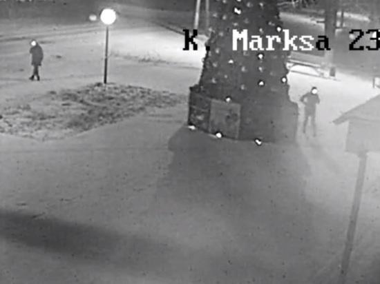 Укравшие с елки игрушки калужанки попали на камеру