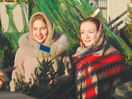 Новогодние елки в домах отреагировали на погодную аномалию