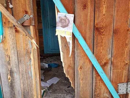 Медведь разгромил кордон инспекторов в нацпарке Чикой