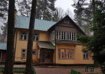 Некогда славное Переделкино, где до сих пор располагается Дом творчества писателей и расположены дома, принадлежавшие Корнею Чуковскому и Борису Пастернаку,  способно стать съемочной площадкой для триллера