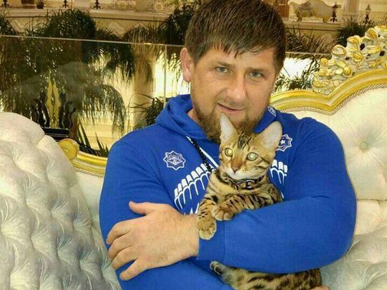 Кадыров: закон о домашнем насилии разрушит институт семьи