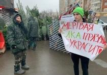 В Москве у елочных базаров прошли пикеты против вырубки деревьев