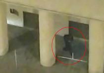"""От источника в следствии нам стало известно, как провел последние часы перед терактом """"стрелок с Лубянки"""" - житель Подольска Евгений Манюров"""