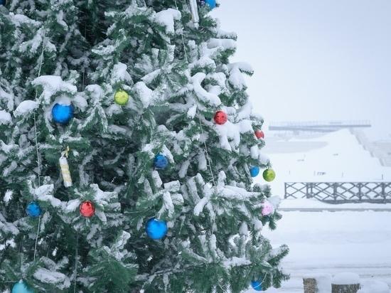Полное расписание событий на Куликовом поле в новогодние праздники