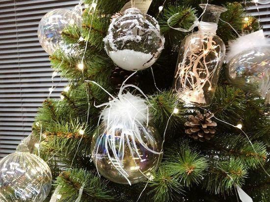 «Зеленый сад» подарил новогоднюю елку