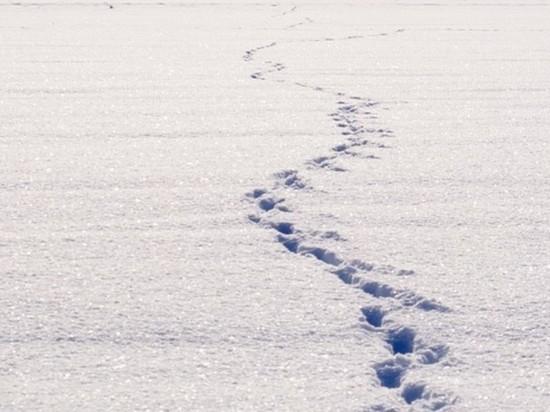 """""""Назло маме отморожу стопы"""": якутский школьник сбежал из дома и поплатился"""