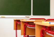 Девятиклассник из Екатеринбурга решил расправиться с учительницей из-за не выученного монолога Чацкого