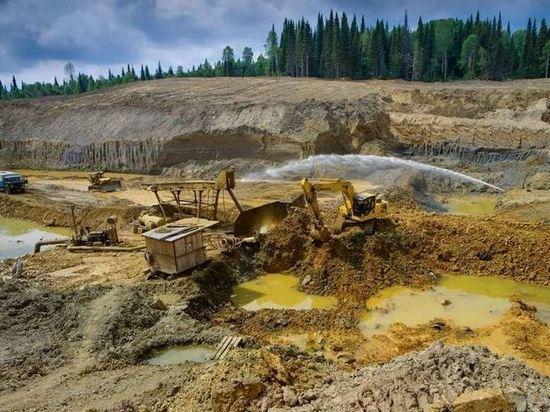 За золото Маревастинского предложили в 87 раз больше стартовой суммы