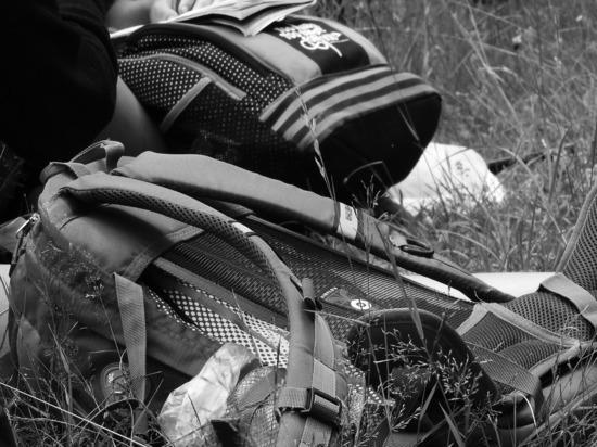 В Мытищах нашли сумку с разложившимся трупом