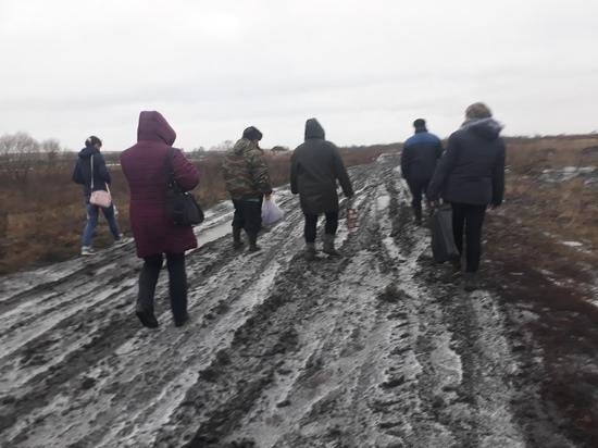 Кому выгодно не пускать «Мираторг» в Курскую область