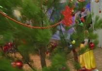 Аниматор, исполнявший роль Деда Мороза, скончался прямо во время утренника в одном из  детскихсадов в Североморске