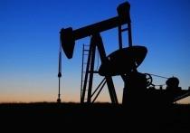 «Роснефть» в рамках стратегии инновационного развития переходит на катализаторы отечественного производства, снижая зависимость от импорта в нефтепереработке