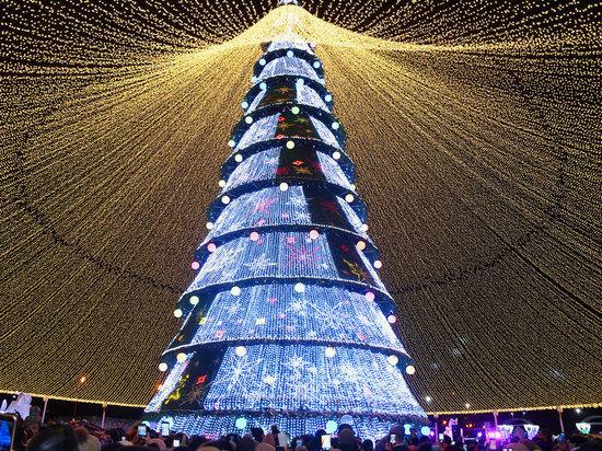 В Казани открылась главная городская новогодняя елка
