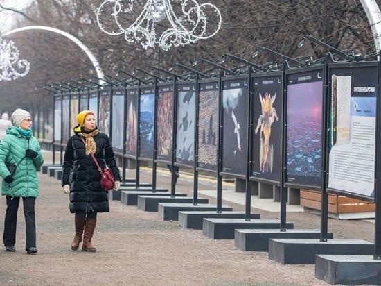 В Москве открылась фотовыставка «Притяжение Арктики»