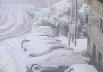 Обильный снег выпал в ряде районов Сирии в преддверии празднования Нового года