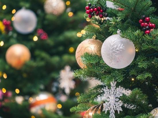 Рождество 2020: правило «до первой звезды нельзя» оказалось ложным