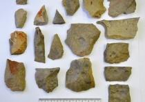 В Томской области найден археологический памятник эпохи позднего неолита